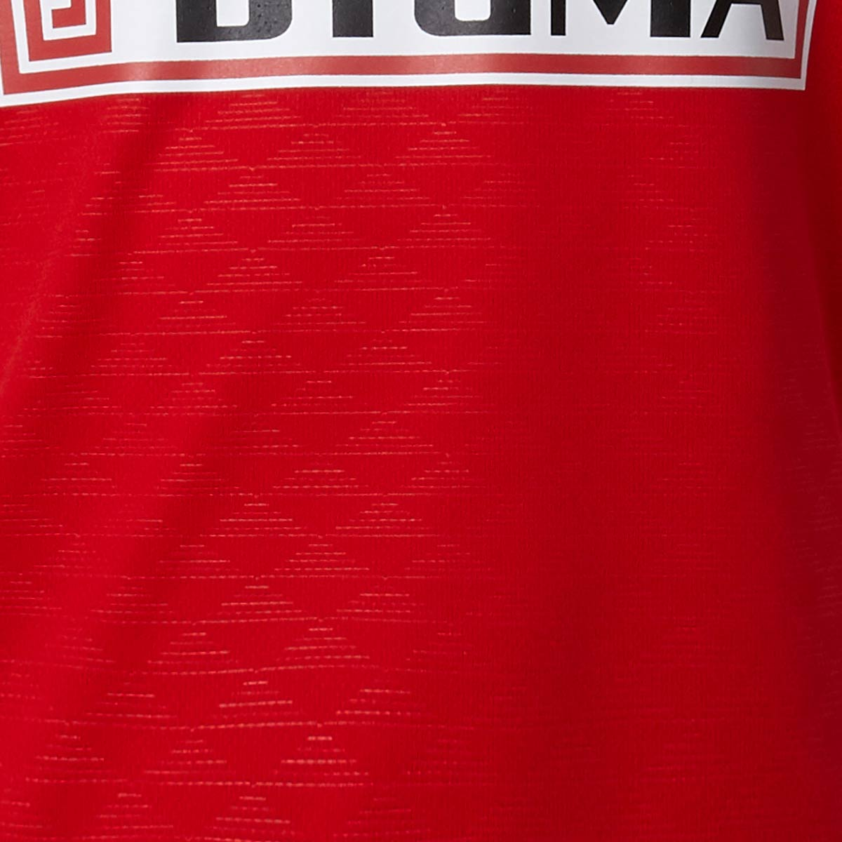 Puma Danmark Håndbold Landsholdstrøje Børn